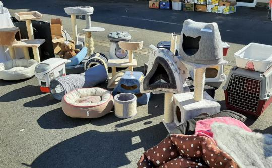 Flohmarkt der Katzenhilfe Neuwied