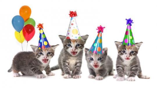 Unsere neue Homepage ist online - wir finden das einen Grund zum Feiern!