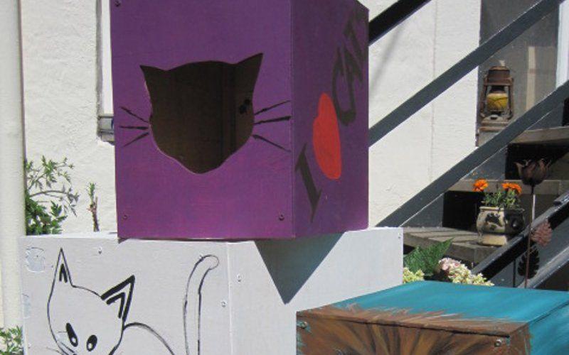 Die liebevollen bemalten Katzenverstecke ...