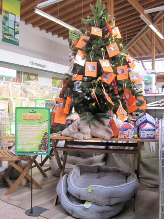 Weihnachtsbaum-Aktion bei Dehner