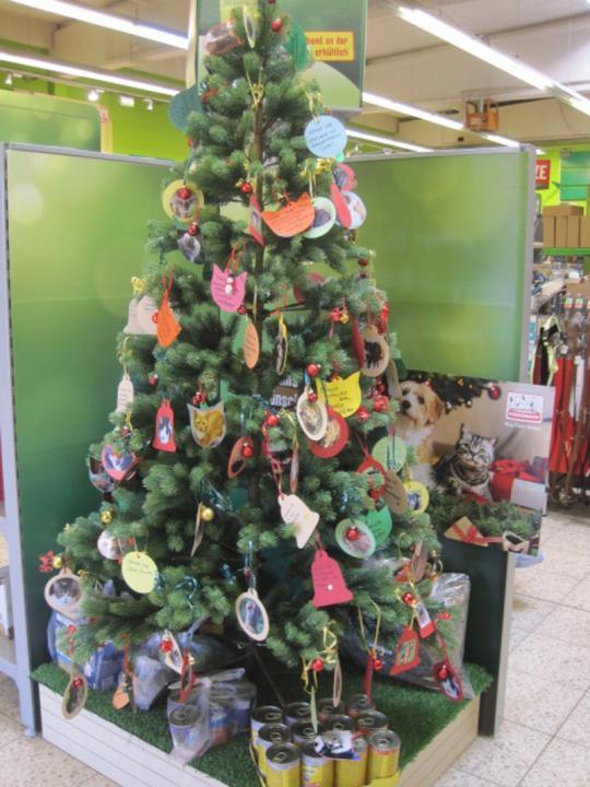 Weihnachtsbaum-Aktion bei Fressnapf